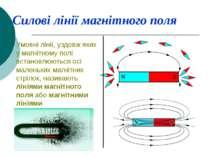Силові лінії магнітного поля Умовні лінії, уздовж яких у магнітному полі вста...