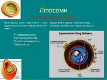 Ліпосоми Ліпосома (гр. lipos – жир и soma – тіло) – сферичний міхурець із фос...