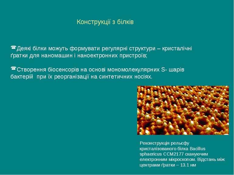 Конструкції з білків Деякі білки можуть формувати регулярні структури – крист...