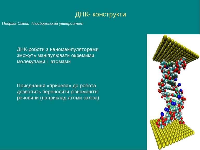 ДНК- конструкти Недріан Сімен, Ньюйоркський університет Приєднання «причепа» ...