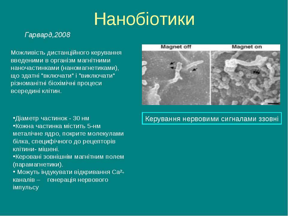 Нанобіотики Можливість дистанційного керування введеними в організм магнітним...