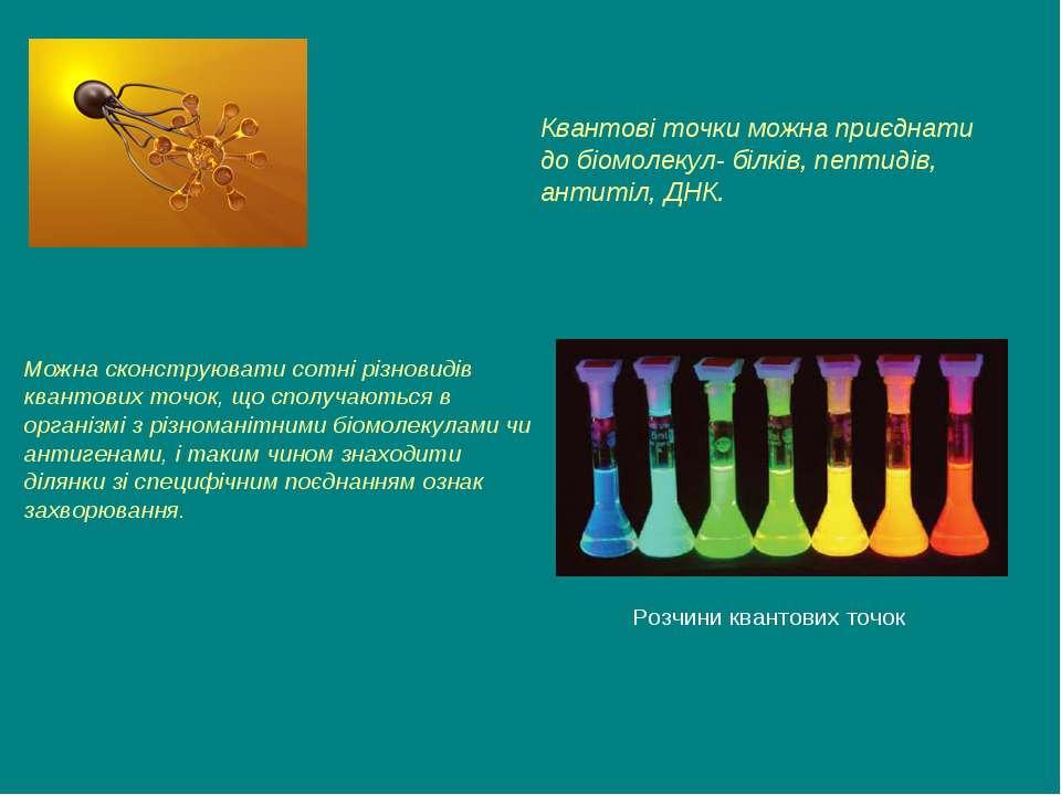 Розчини квантових точок Квантові точки можна приєднати до біомолекул- білків,...