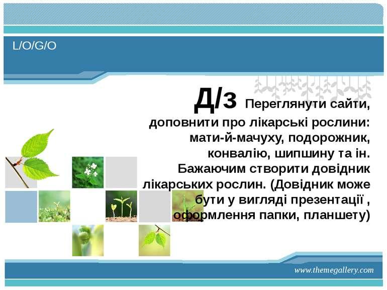 Д/з Переглянути сайти, доповнити про лікарські рослини: мати-й-мачуху, подоро...