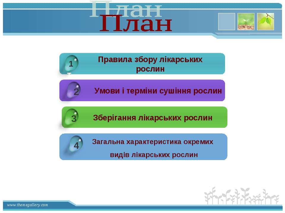 1 1 2 Правила збору лікарських рослин Умови і терміни сушіння рослин Зберіган...