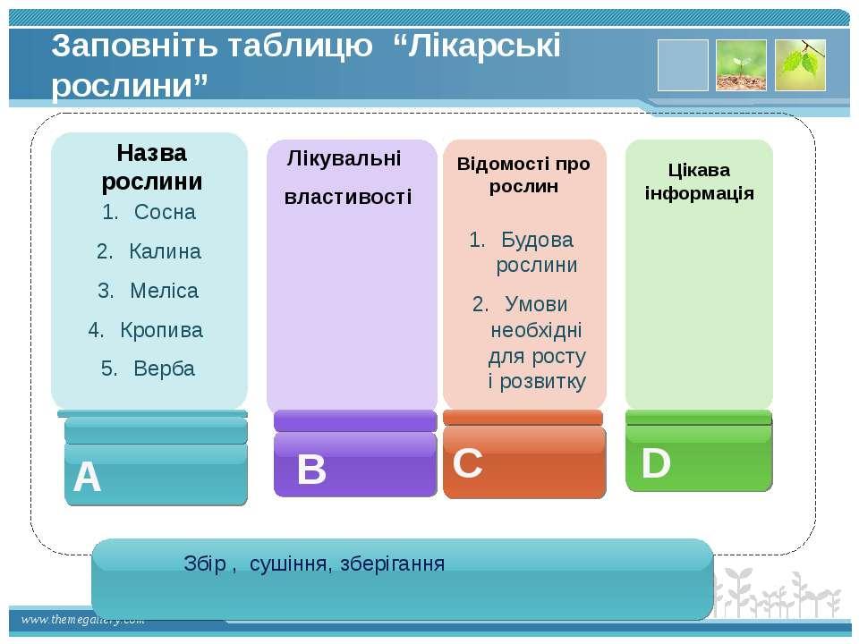 """Заповніть таблицю """"Лікарські рослини"""" Назва рослини Лікувальні властивості Ві..."""