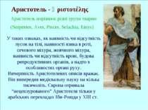 Аристотель - Ἀριστοτέλης Аристотель порівнює різні групи тварин (Serpentes, A...