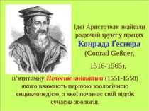 Ідеї Аристотеля знайшли родючий ґрунт у працях Конрада Ґеснера (Conrad Geßner...