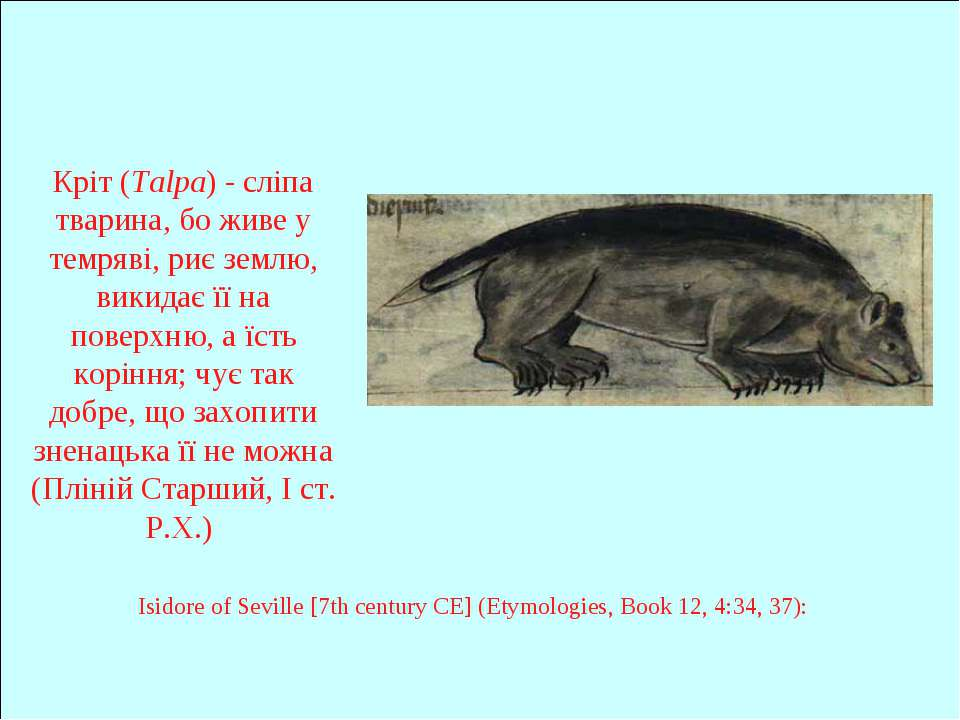 Кріт (Talpa) - сліпа тварина, бо живе у темряві, риє землю, викидає її на пов...