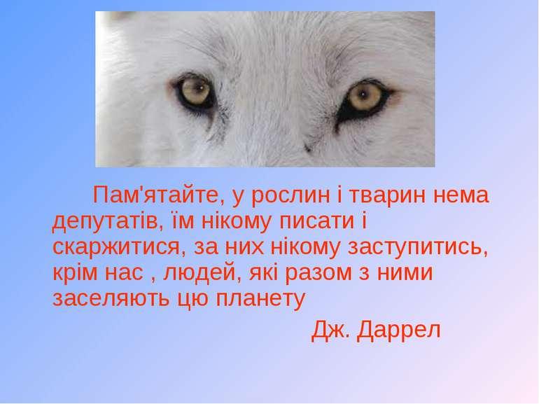 Пам'ятайте, у рослин і тварин нема депутатів, їм нікому писати і скаржитися, ...