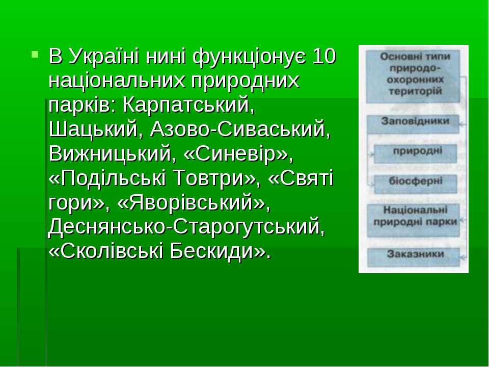 В Україні нині функціонує 10 національних природних парків: Карпатський, Шаць...