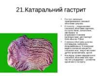 21.Катаральний гастрит Гостре запальне захворювання слизової оболонки шлунка....