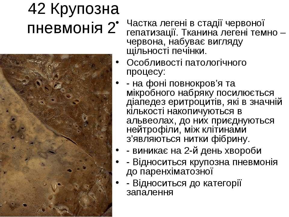 42 Крупозна пневмонія 2 Частка легені в стадії червоної гепатизації. Тканина ...
