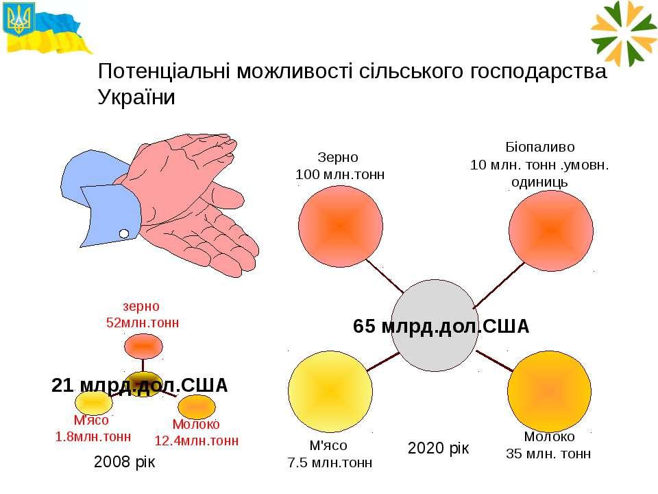 Потенціальні можливості сільського господарства України 2008 рік 2020 рік Біо...