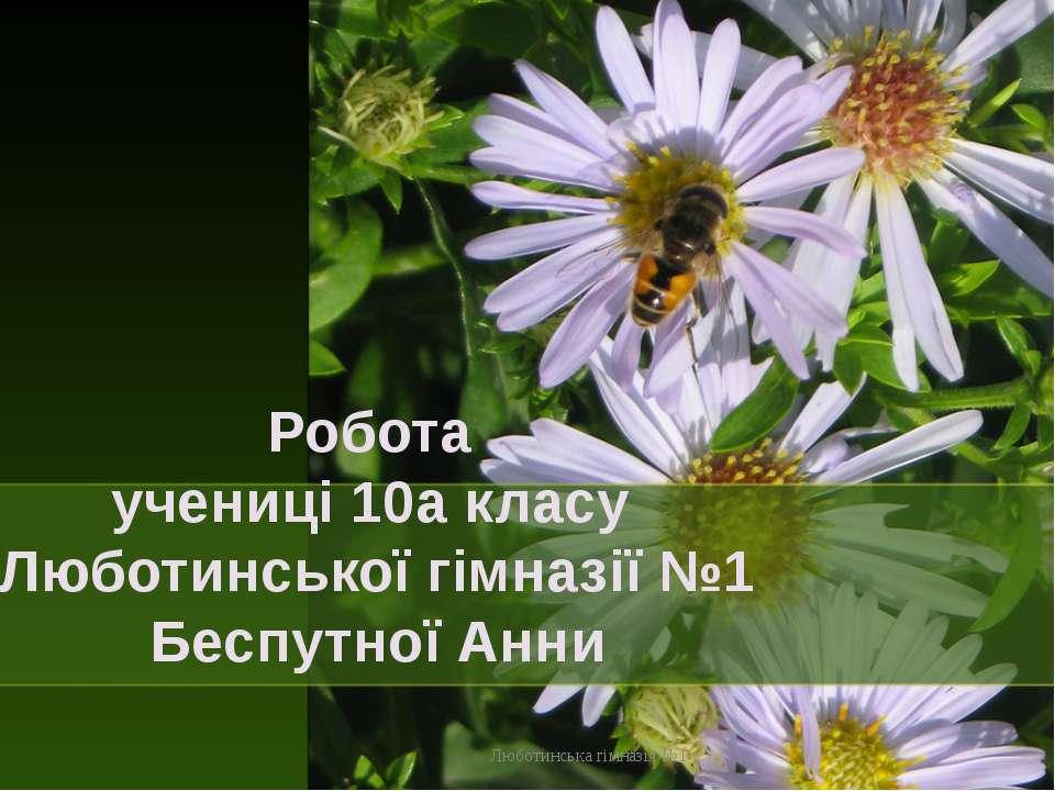 Робота учениці 10а класу Люботинської гімназії №1 Беспутної Анни Люботинська ...