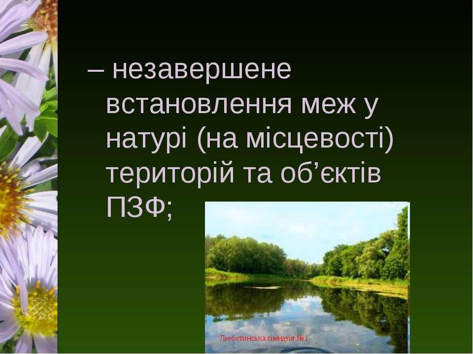 – незавершене встановлення меж у натурі (на місцевості) територій та об'єктів...