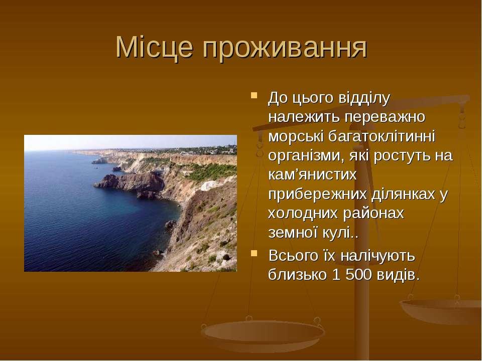 Місце проживання До цього відділу належить переважно морські багатоклітинні о...