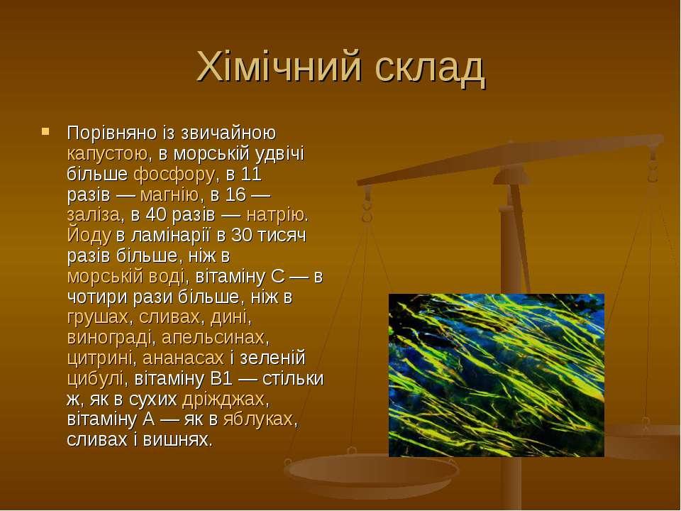 Хімічний склад Порівняно із звичайною капустою, в морській удвічі більше фосф...