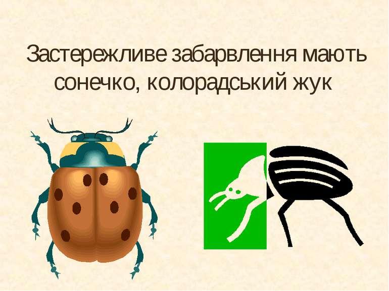 Застережливе забарвлення мають сонечко, колорадський жук