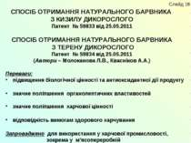 СПОСІБ ОТРИМАННЯ НАТУРАЛЬНОГО БАРВНИКА З КИЗИЛУ ДИКОРОСЛОГО Патент № 59833 ві...
