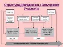 Структура Дослідження з Залученням Учасників
