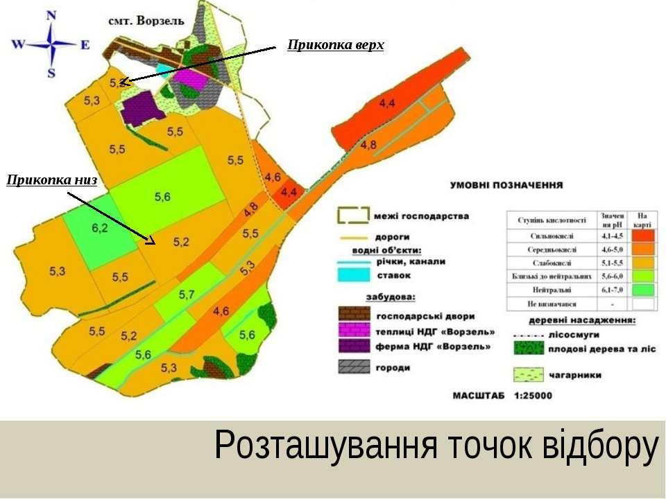 Розташування точок відбору Прикопка верх Прикопка низ