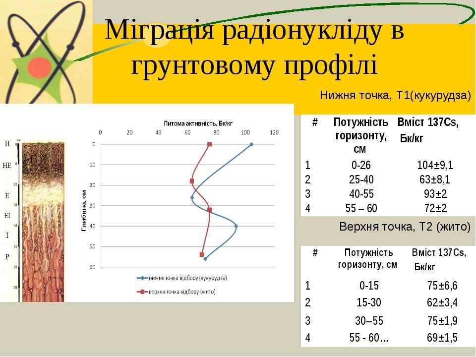 Міграція радіонукліду в грунтовому профілі Нижня точка, Т1(кукурудза) Верхня ...