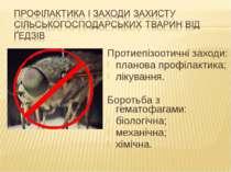 Протиепізоотичні заходи: планова профілактика; лікування. Боротьба з гематофа...