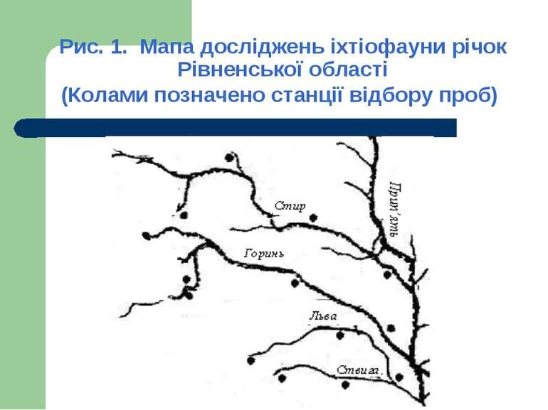 Рис. 1. Мапа досліджень іхтіофауни річок Рівненської області (Колами позначен...