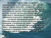Проблеми Чорного моря потребують підвищеної уваги, а їх вирішення — системног...