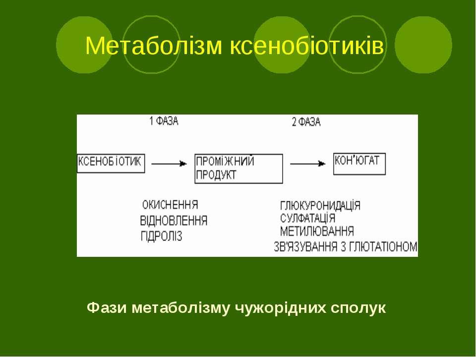 Метаболізм ксенобіотиків Фази метаболізму чужорідних сполук