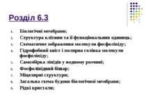 Розділ 6.3 Біологічні мембрани; Структура клітини та її функціональних одиниц...