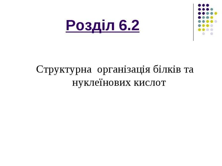 Розділ 6.2 Структурна організація білків та нуклеїнових кислот