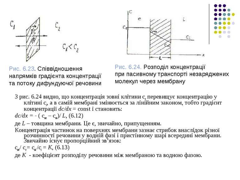 З рис. 6.24 видно, що концентрація зовні клітини се перевищує концентрацію у ...