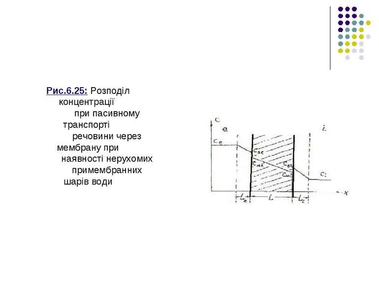 Рис.6.25: Розподіл концентрації при пасивному транспорті речовини через мембр...