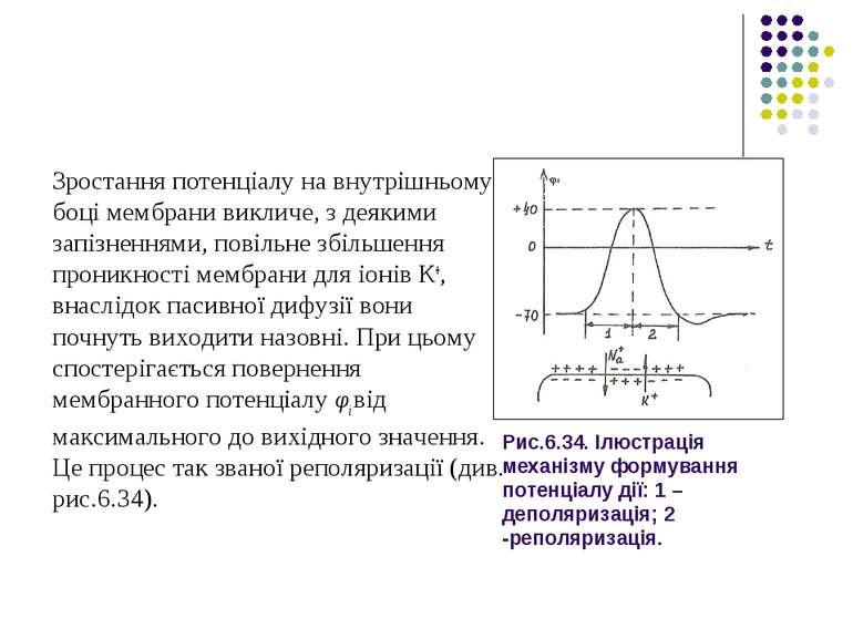 Рис.6.34. Ілюстрація механізму формування потенціалу дії: 1 – деполяризація; ...