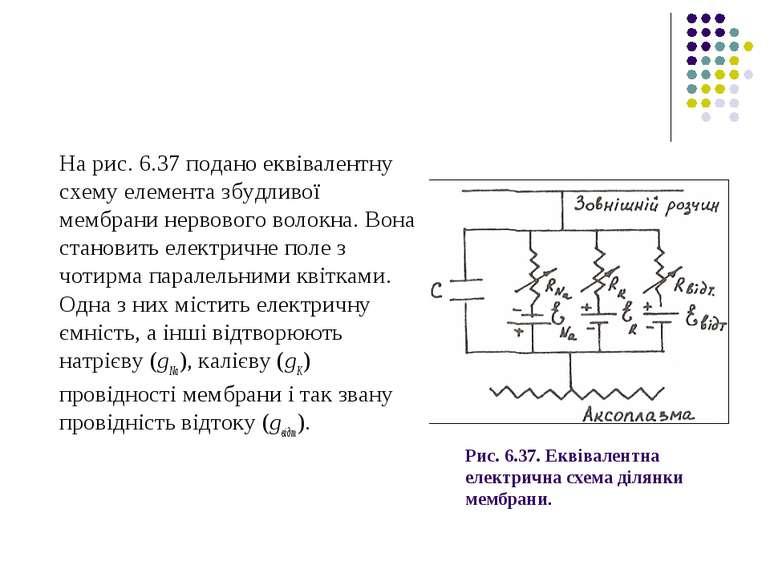 Рис. 6.37. Еквівалентна електрична схема ділянки мембрани. На рис. 6.37 подан...