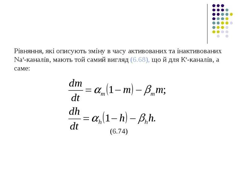Рівняння, які описують зміну в часу активованих та інактивованих Na+-каналів,...