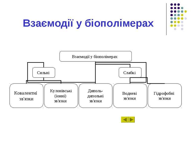 Взаємодії у біополімерах