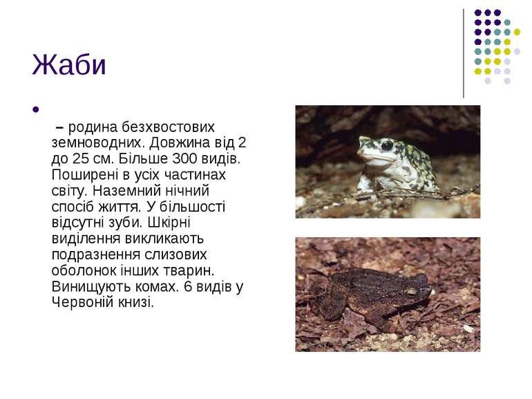 Жаби – родина безхвостових земноводних. Довжина від 2 до 25 см. Більше 300 ви...
