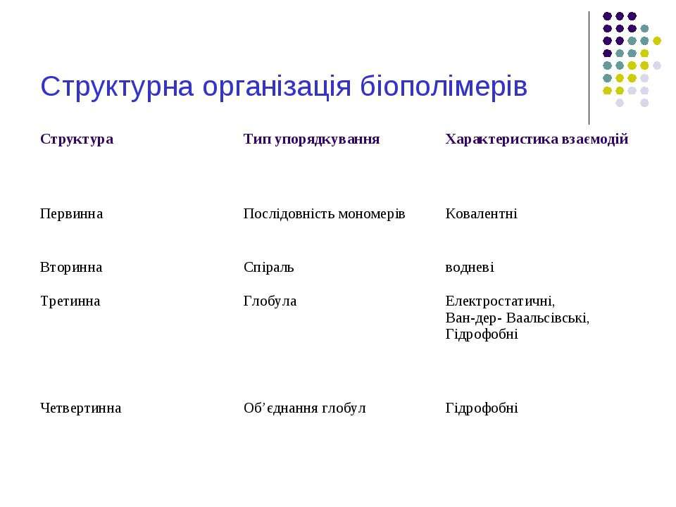 Структурна організація біополімерів