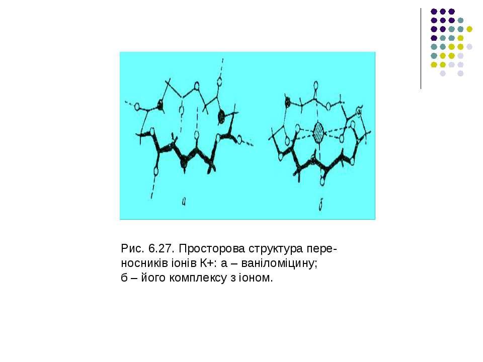 Рис. 6.27. Просторова структура пере- носників іонів К+: а – ваніломіцину; б ...