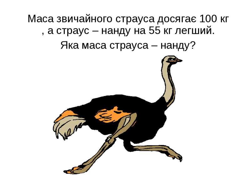 Маса звичайного страуса досягає 100 кг , а страус – нанду на 55 кг легший. Як...