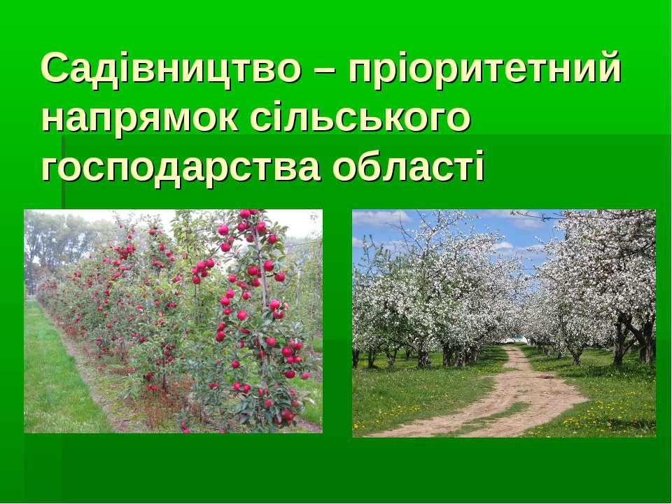 Садівництво – пріоритетний напрямок сільського господарства області