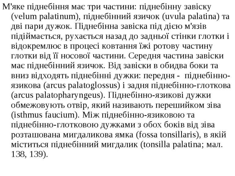 М'яке піднебіння має три частини: піднебінну завіску (velum palatinum), підне...
