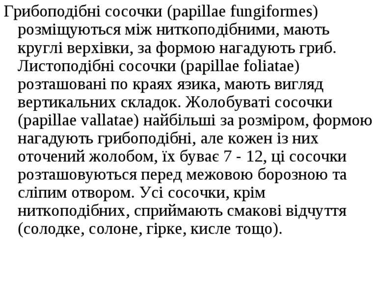 Грибоподібні сосочки (papillae fungiformes) розміщуються між ниткоподібними, ...