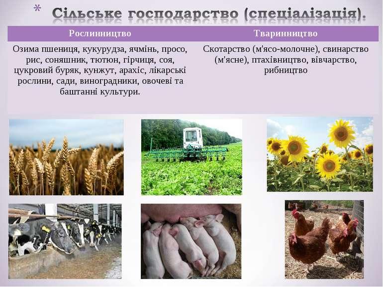 Рослинництво Тваринництво Озима пшениця, кукурудза, ячмінь, просо, рис, соняш...