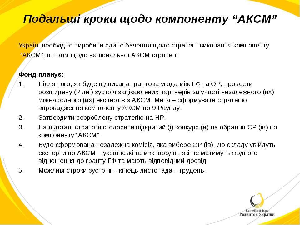 """Подальші кроки щодо компоненту """"АКСМ"""" Україні необхідно виробити єдине баченн..."""