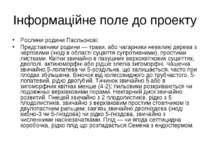 Інформаційне поле до проекту Рослини родини Пасльонові: Представники родини —...
