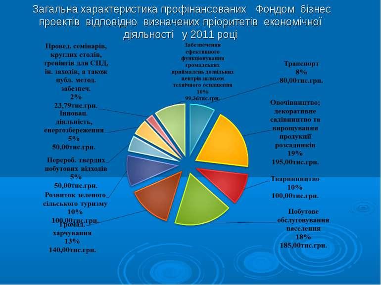 Загальна характеристика профінансованих Фондом бізнес проектів відповідно виз...