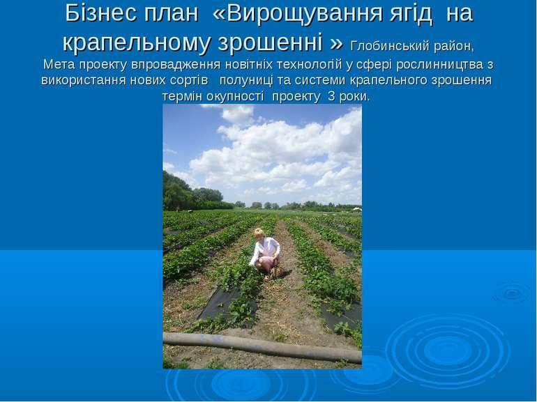 Бізнес план «Вирощування ягід на крапельному зрошенні » Глобинський район, Ме...